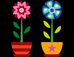 flores-300x233